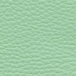 Spinergo Beauty zelená